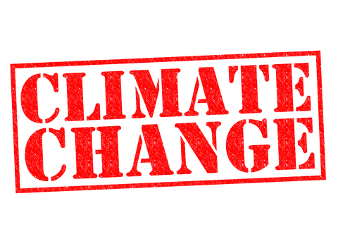 words climate change in red on white background