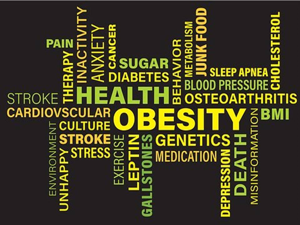 obesity wordle